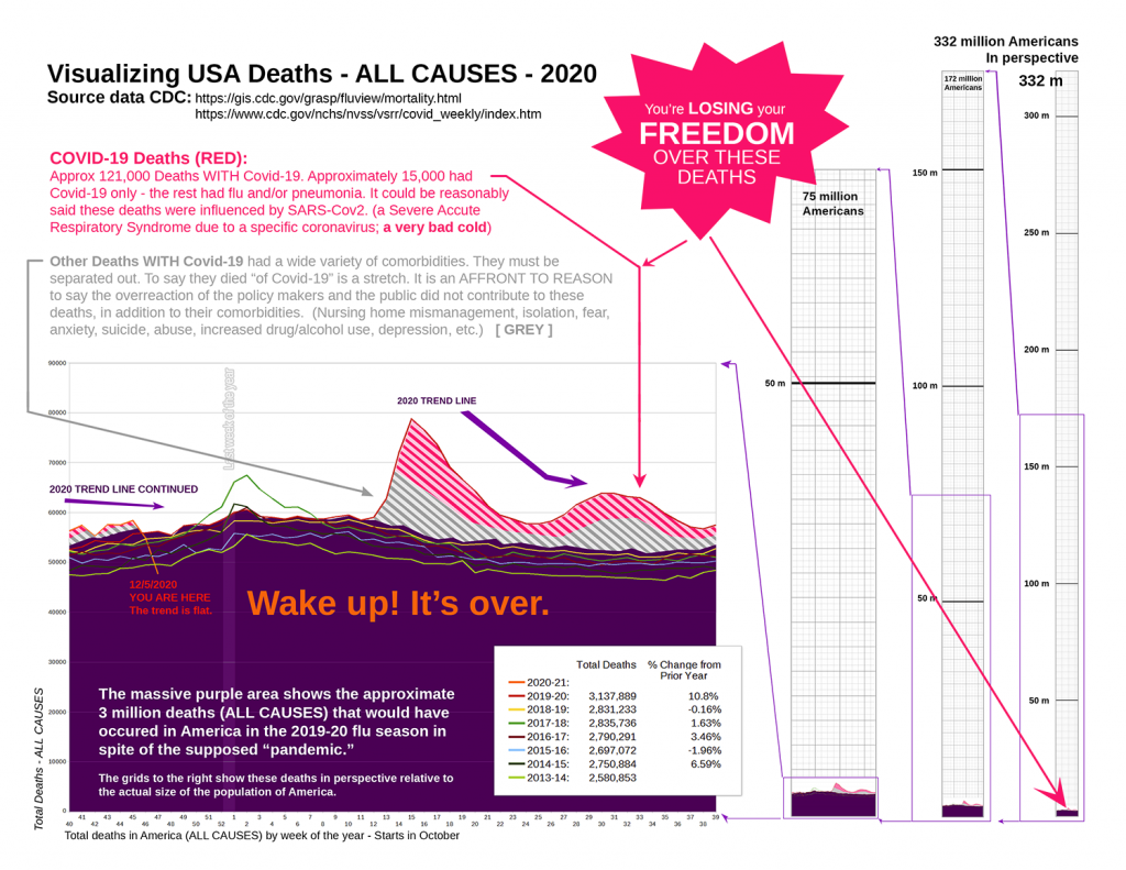 Total deaths in the US in perspective 2020
